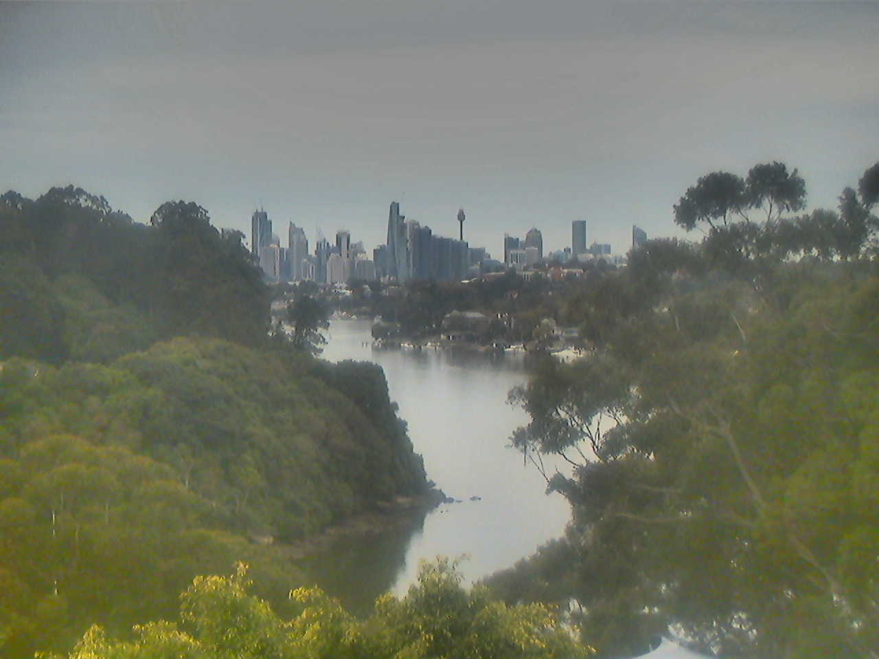 Sydney City Webcam viewed from Lower North Shore - sponsored by Nous House